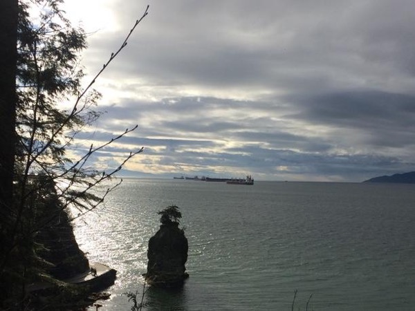 Stanley Park Explorer - Private tour