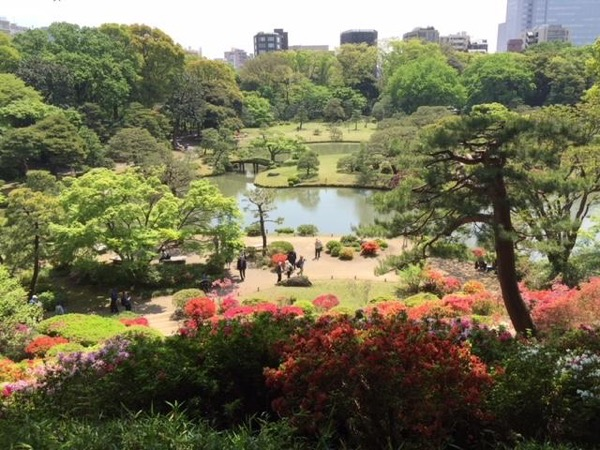 Tokyo's Unknown Japanese Gardens - A Private Tour (Full Day)