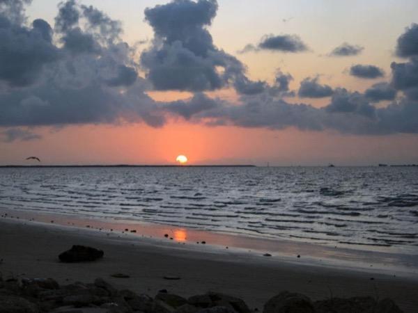 Galveston Private Shore Excursion Starting From Galveston