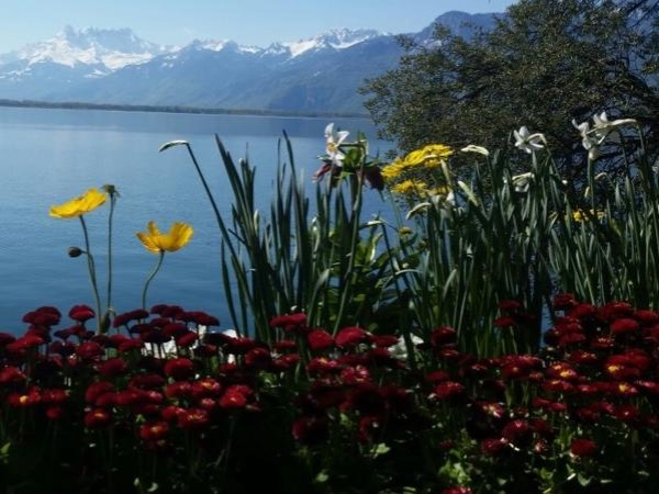 Private Montreux City Tour