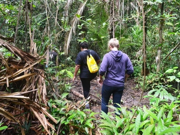 Balikpapan Jungle & Mangrove Tour