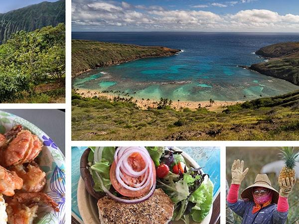 Oahu Food & Sightseeing Highlights Tour