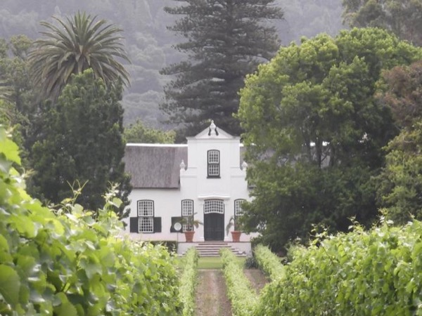 Private Cape of Good Hope and Constantia wine valley tour