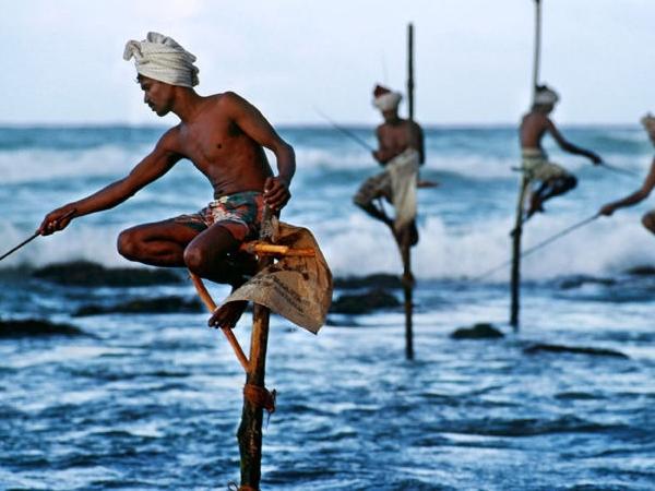 Sri Lanka round tour in 8 Days