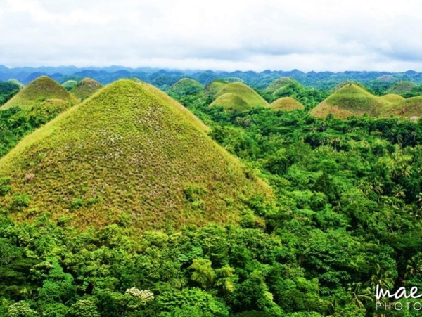 Bohol: The Perfect Escape