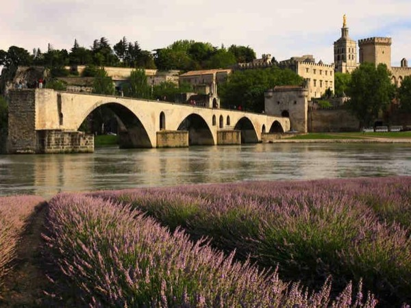 A private history tour of Avignon