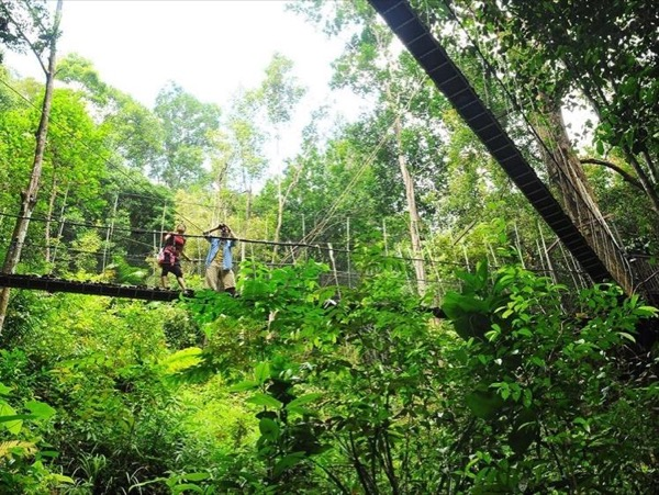 A Tour to Penang's National Park and Bird Park