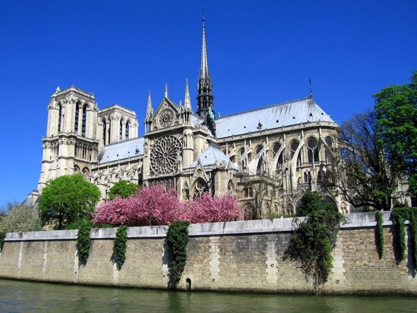 Ile de la Cité, Notre Dame Cathedral and Latin Quarter private walking tour