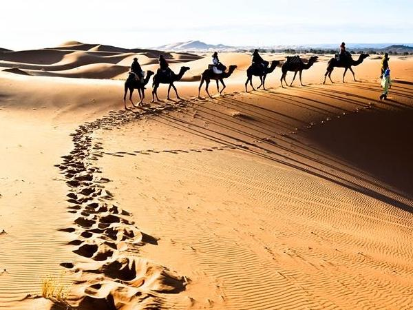 3 days/2 Nights Private Sahara Desert tour from Fez to Marrakech