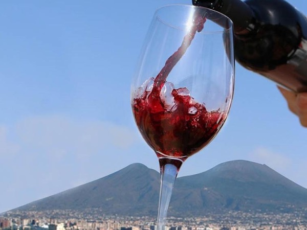 Pompei and Wine Tasting from Sorrento