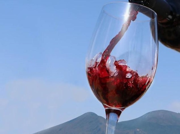 Pompei and Wine Tasting from Salerno