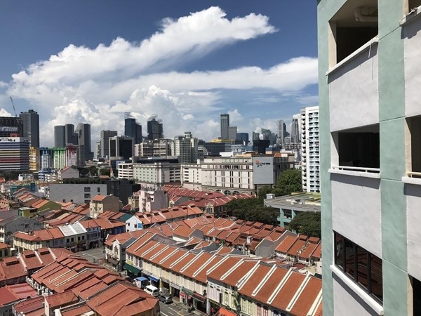 Private Walking Tour - Singapore