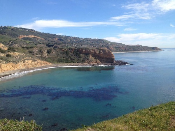Private Tour of Abalone Cove Shoreline and Terranea Resort
