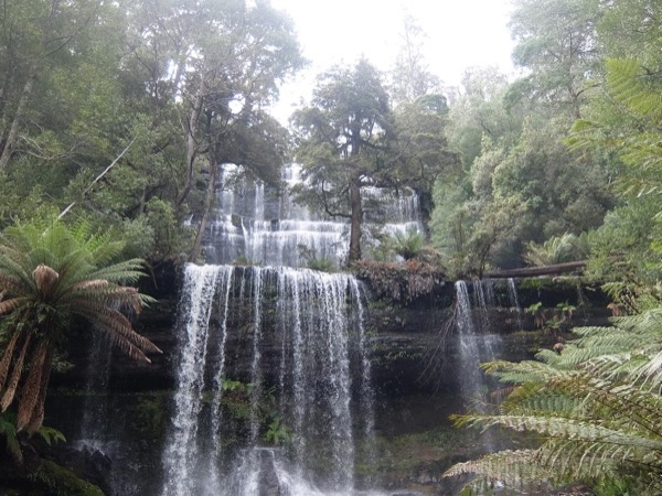 Russel Falls and Wildlife Park