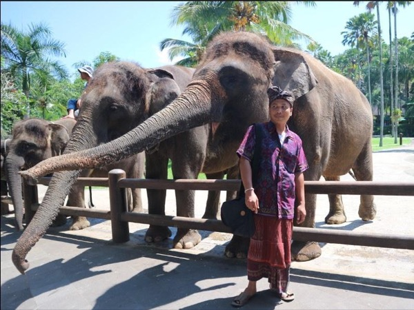Elephant Ride, Waterfall and Ubud Tour