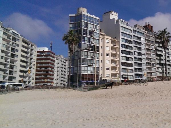 Montevideo City Private Full Day Shore Excursion Tour (Up to 3 passengers)