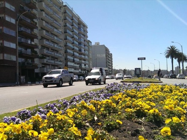 Montevideo Private Full Day Shore Excursion Tour (4 to 8 passengers)