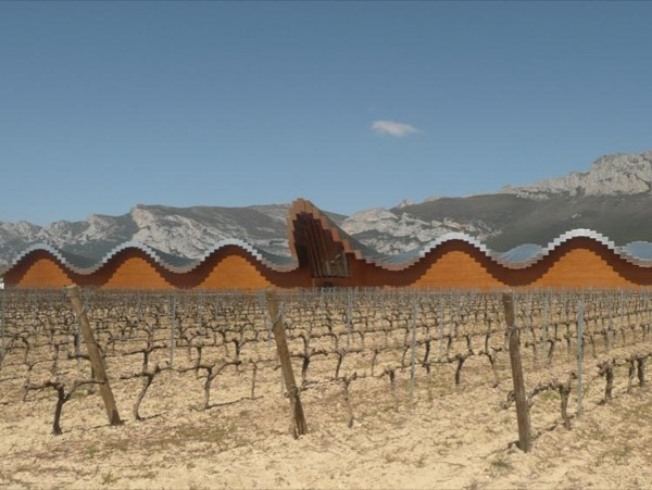 Wine tasting tour to Rioja with a private guide
