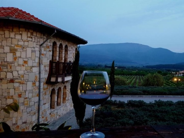 Private Ephesus tour with winery visit