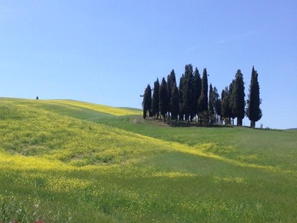 Classic Siena tour 2 hours
