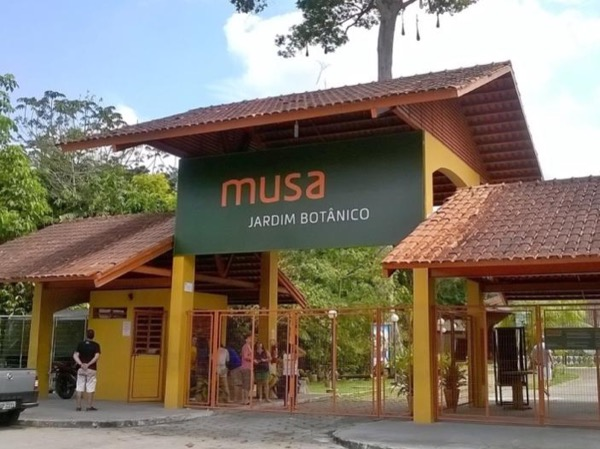 The Amazonian Museum and The Observation Tower - MUSA