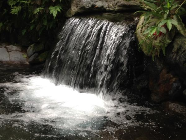 Day Trip from Manila: Hidden Valley