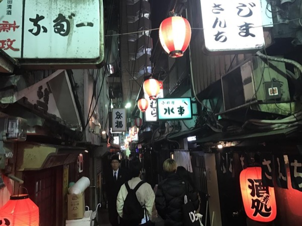 Tokyo by Night Strolling Tour