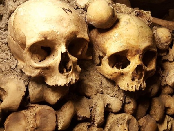 Private tour of the Catacombs of Paris !