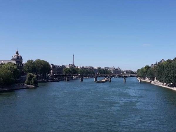 Half day panoramic tour... Paris will be all yours!