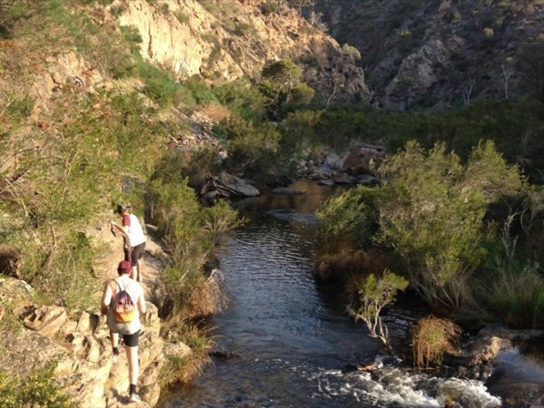Parks and Forests - Private Hiking Tours Around Melbourne