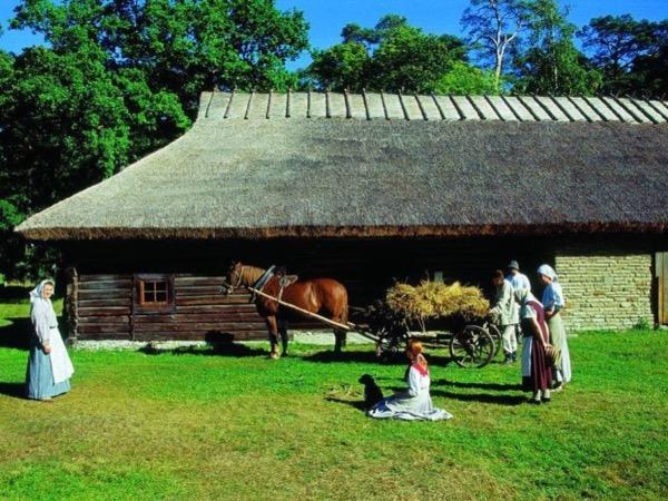 Tour to Open Air Museum in Tallinn