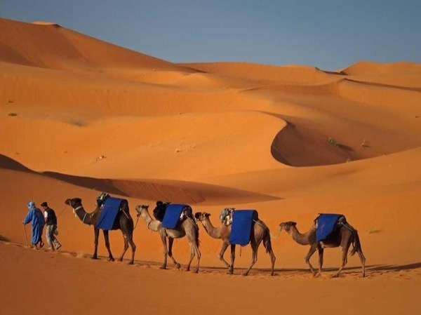 2 Days and One night in the Desert of Merzouga