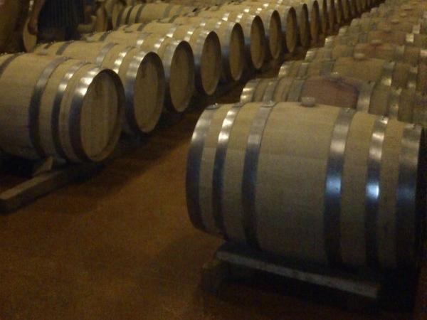 Ensenada Wine Experience