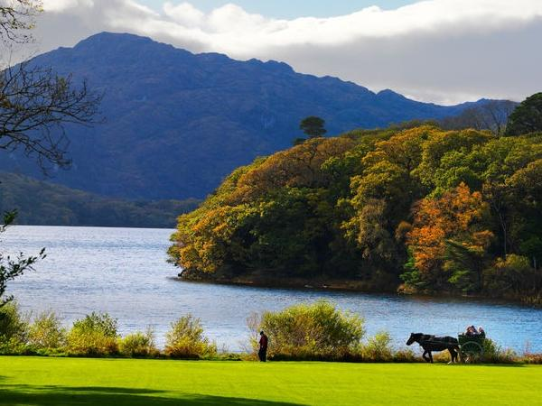 Private Shore Tour to Killarney National Park and Muckross House, Killarney