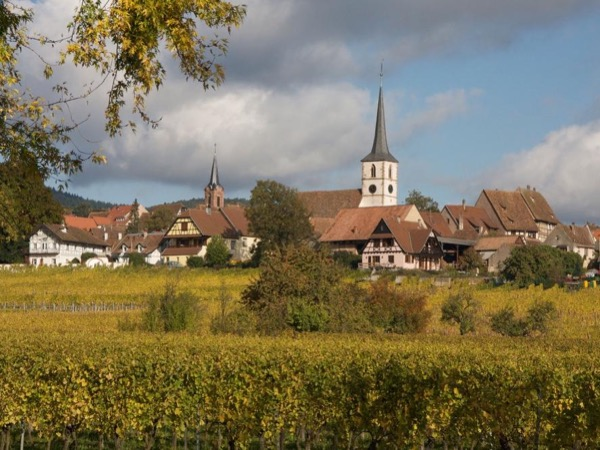 The Best of the Alsace Wine Route during a Private Day Tour (1): Obernai, Mittelbergheim, Riquewihr, Colmar