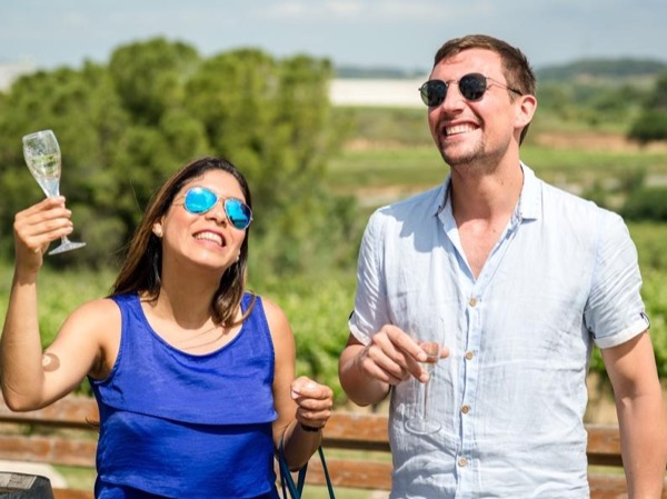 Wine Tasting Day Trip in the vineyards