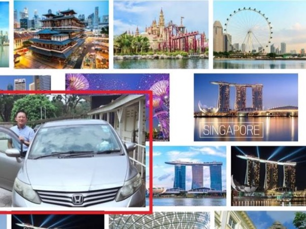 Singapore Drive Sightseeing by Car Transport Private Tour