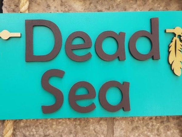 Day Tour to the Dead Sea and Massada.