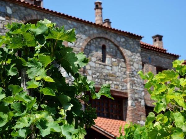 Georgian Wine Region - Kakheti (Full day private tour)