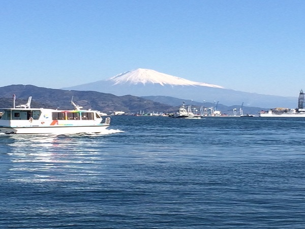 The best Private Tour from Shimizu port in Shizuoka (4 hours)