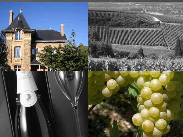 Champagne private tour from Paris (11 hours)