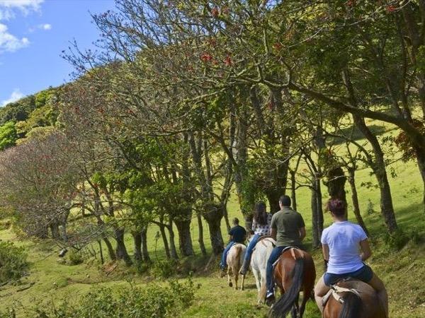 Mountain Horseback Riding Tour