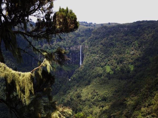 Mount Kenya Region Private Safari