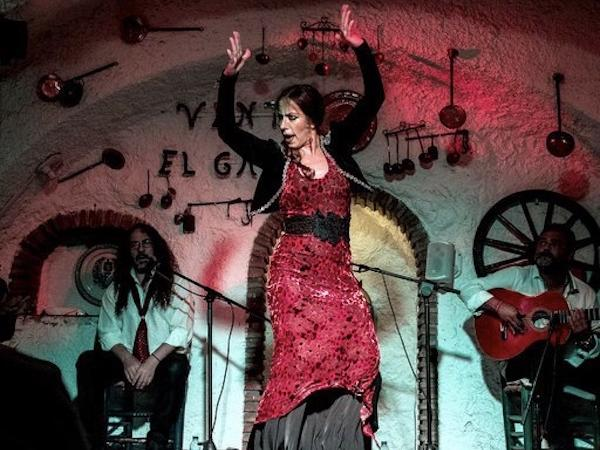 Flamenco Show w Paella and an inhabited cave visit in the sacromonte Cave area