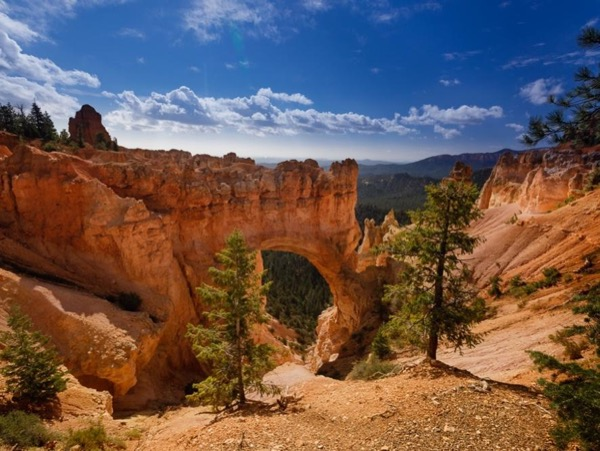 Bryce Canyon National Park over night tour