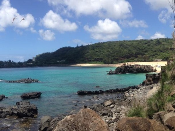 Customizable Private North Shore and Windward Tour of Oahu