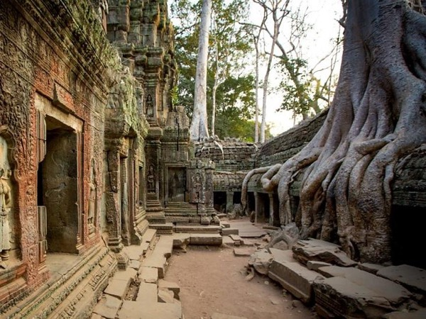 One Day Angkor Wat-Angkor Thom Private Tour