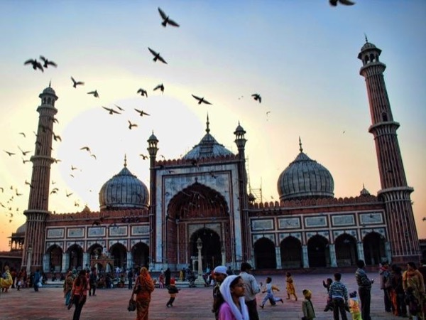 Delhi - Privately Guided Day Tour ( All Inclusive )