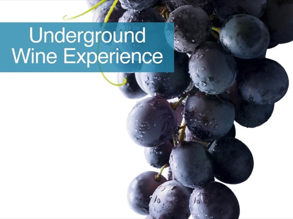 Underground Wine Experience