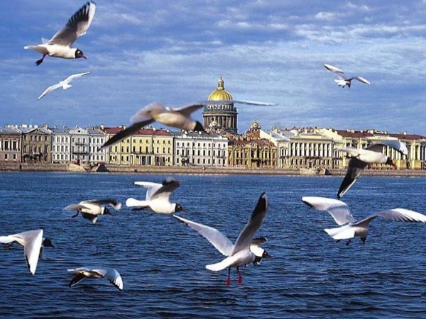3 days Shore private tour in St Petersburg